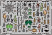 EDU-36198 Fauna - small animals - colour