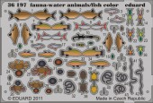 EDU-36197 Fauna - water animals/ fish - colour