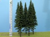 SK202 Spruce with short trunk 180-220 mm (3 pcs.)
