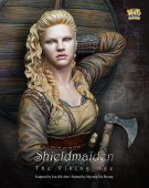 NP-B013 Shield maiden